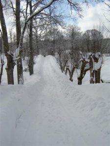 Vinter 013 (Small)